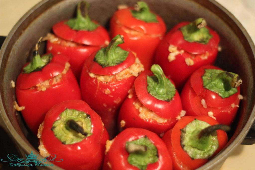 Когда опрыскивать помидоры от фитофторы Вырасти сад! 66