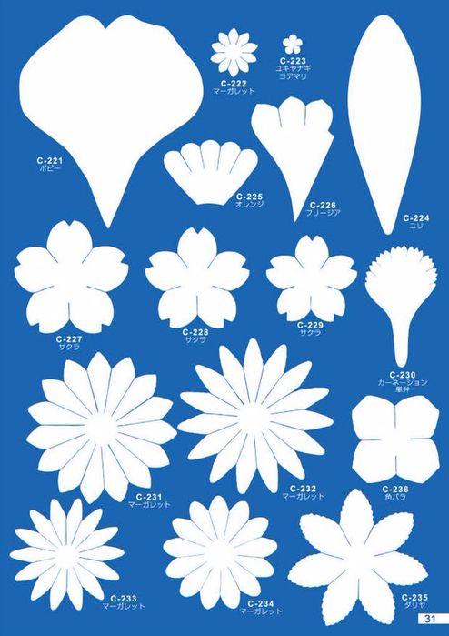 шаблон цветов и лепестков