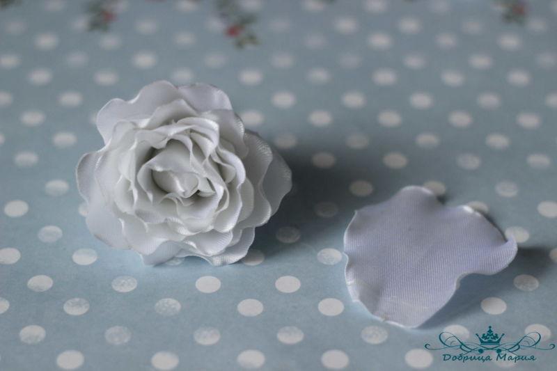 rozy iz lent15
