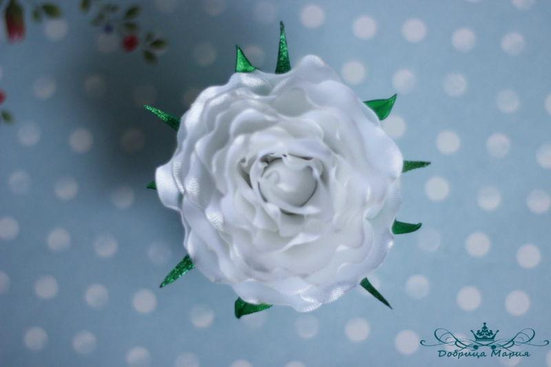 rozy iz lent19