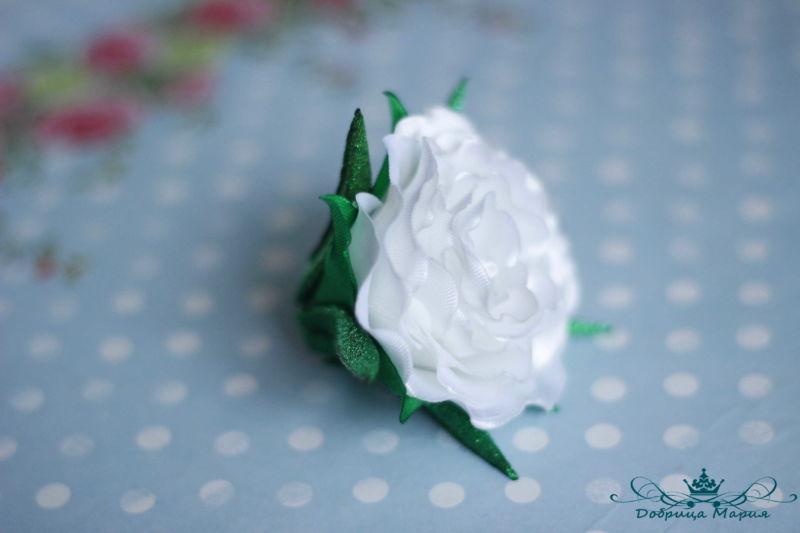rozy iz lent20