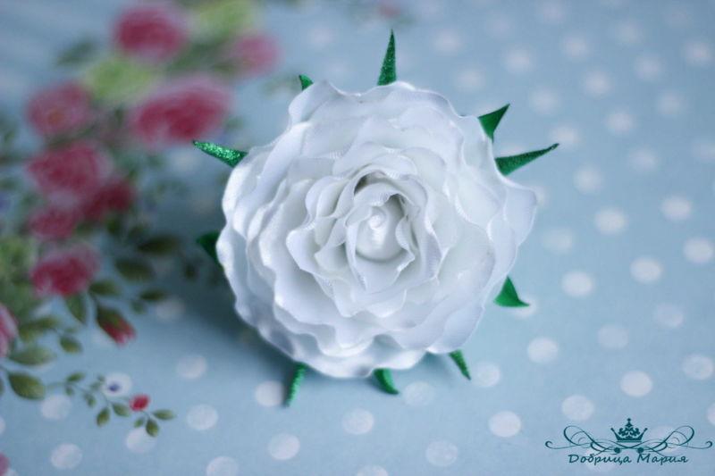rozy iz lent18