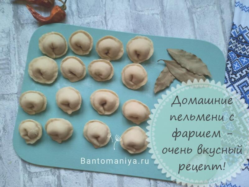 Пельмени домашние с фаршем — очень вкусные! Классический рецепт пельменей в домашних условиях (фарш + тесто)